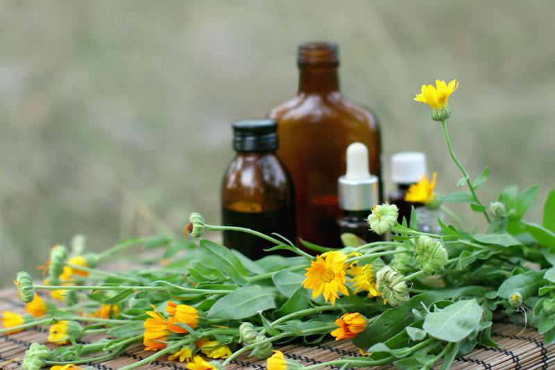 Herb tincture bottles